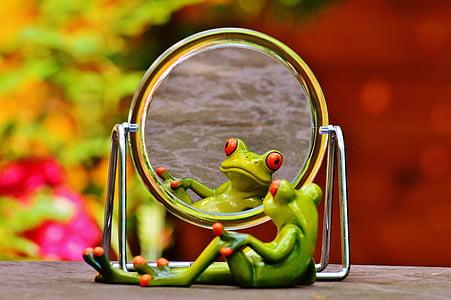 green frog looking at mirror