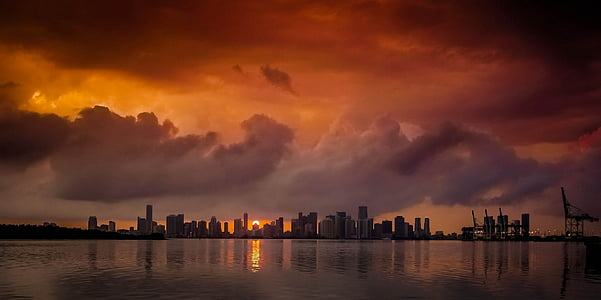 silhouette photo of city buildings during dawn