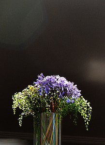 green and purple flowers in clear glass vase selective-focus photography