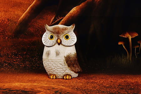 brown and white owl illustration