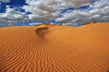 landscape photography of sand