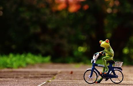 frog on bicycle