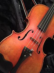 brown violin close up photo