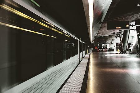 white speed train