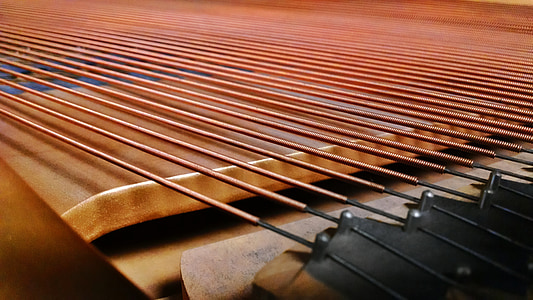 closeup photo of string instrument