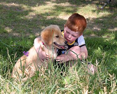 boy beside golden retriever puppy on green grass field