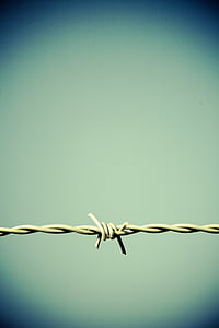 gray barbwire