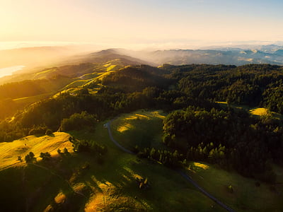 aerial photo of lush field and forest during golden hour