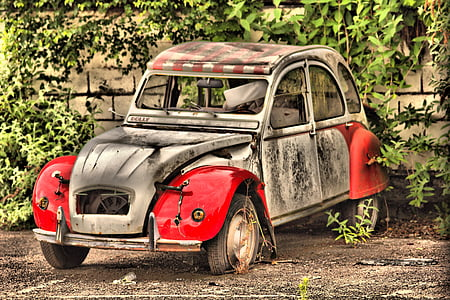 abandoned white and red Citroen CV2 near wall with green leaf plants during daytime
