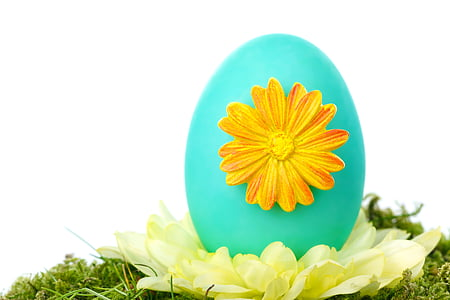 teal egg with orange flower emboss close up photo