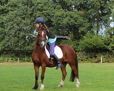 girl riding brown pony during daytime