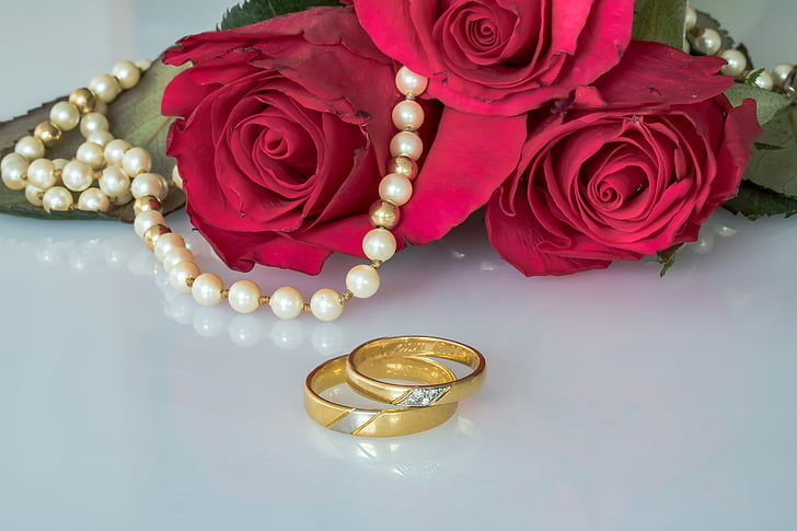 two gold-colored ring near red rose
