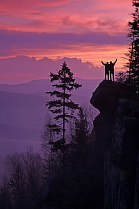 two person standing at the mountains