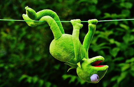 green Kermit the Frog hanging on string