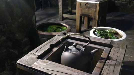 black kettle near succulent plant during daytime