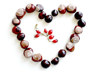 close-up photo of red cherries