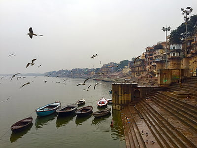 village beside body of water surrounded with boats with birds flying