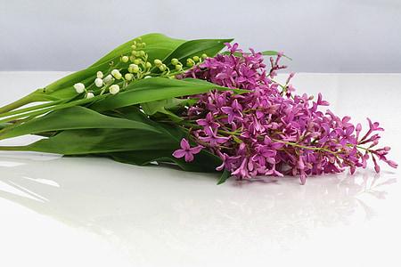 purple petaled flowers on white platform