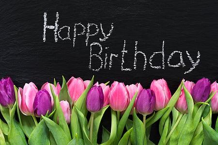pink and purple tulips happy birthday illustration