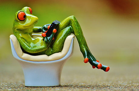 green frog figurine during daytime