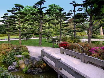 photo of bridge along the pond
