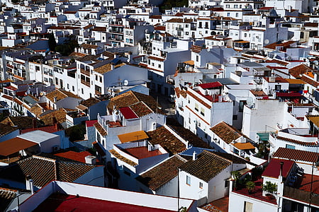 white-and-brown buildings
