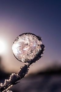 fucos photography of ice