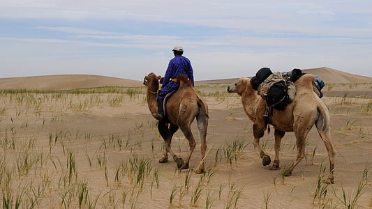 man riding on camel in the middle of dessert
