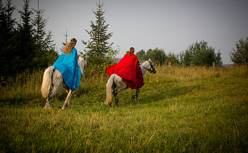 two person riding horse on green grass field