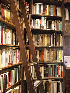 brown wooden ladder on wooden shelf