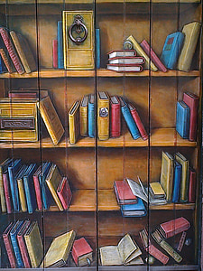 assorted-books on bookshelf illustration