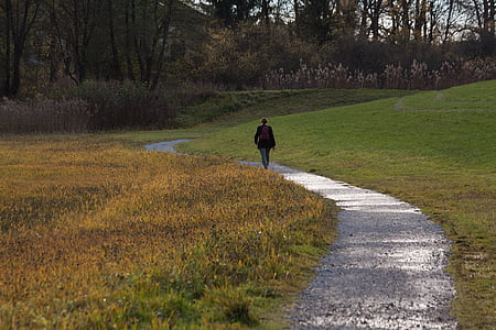 person walking along grass field pathway