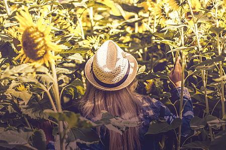 woman touching sunflower plant