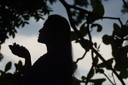 silhouette of woman near tree