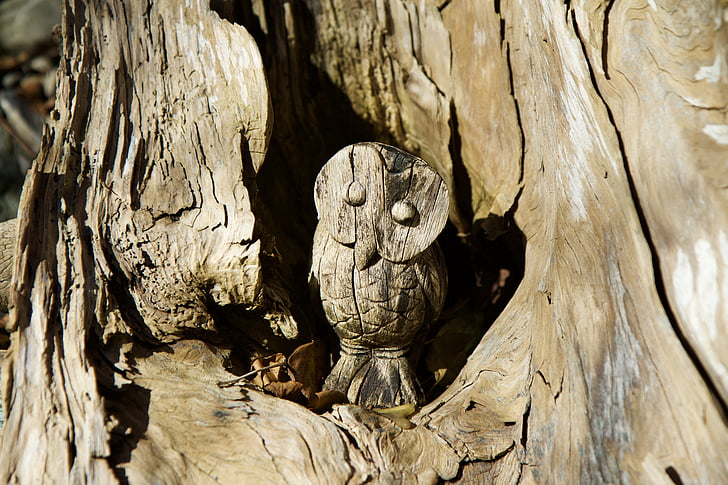 brown carved owl tree trunk