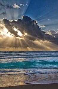 seashore under mid-cloudy sky