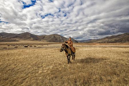 man ride on horse in open field