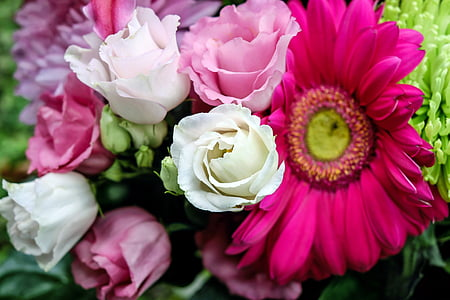closeup photo of white and pink flower bouquet