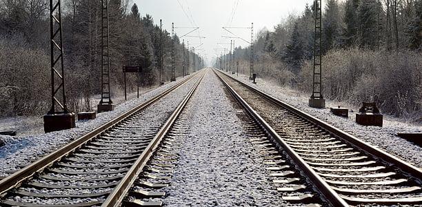 empty train railroad near trees at daytime