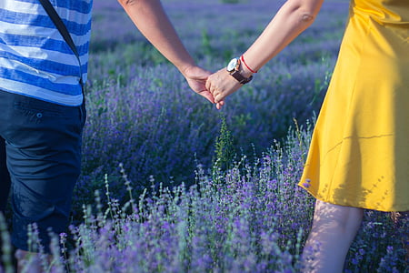 man and woman holding hands standing in lavender fields