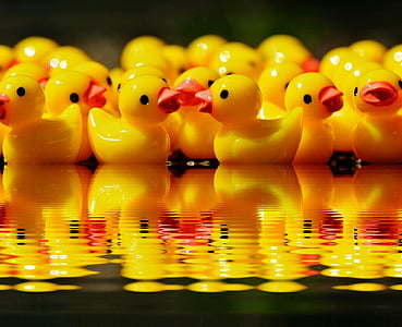 yellow rubber duckies on body of water