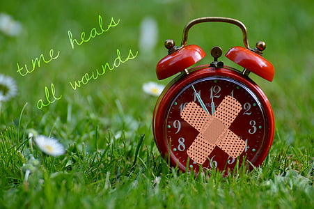 shallow focus photography of red alarm clock on grass field