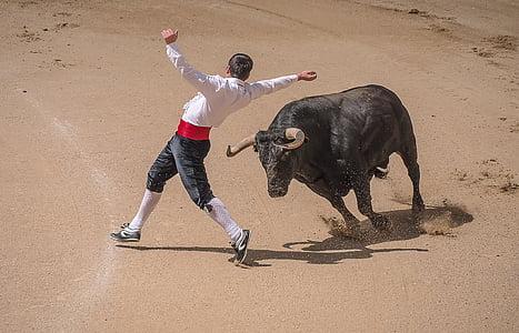 photo of matador dodging charging bull bull