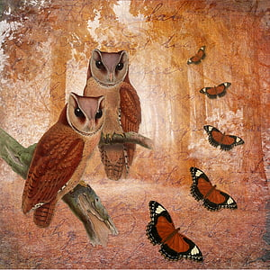 two owls and and five butterflies paintings