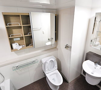 white flush toilet with cupboard with mirror on top