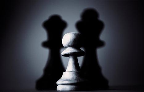 gray pawn chess piece