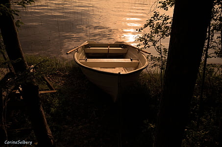 brown jon boat near shore during sunset
