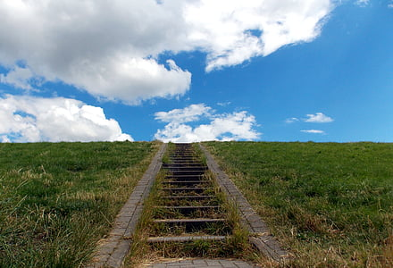 gray concrete stair surrounded by grass