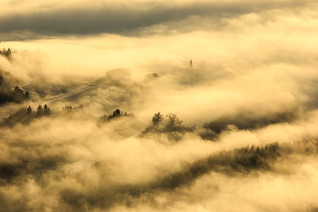 mountains covered in fog
