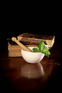 mortar and pestle with green leaves beside books